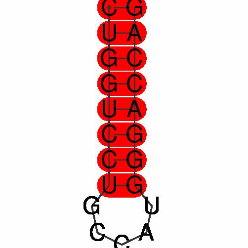 FR013988