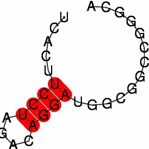 FR015256