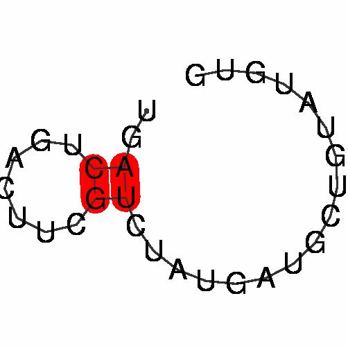 FR015307