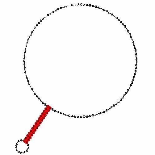 FR030728
