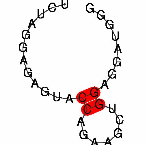 FR035164