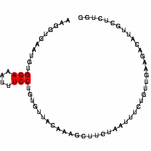 FR043004