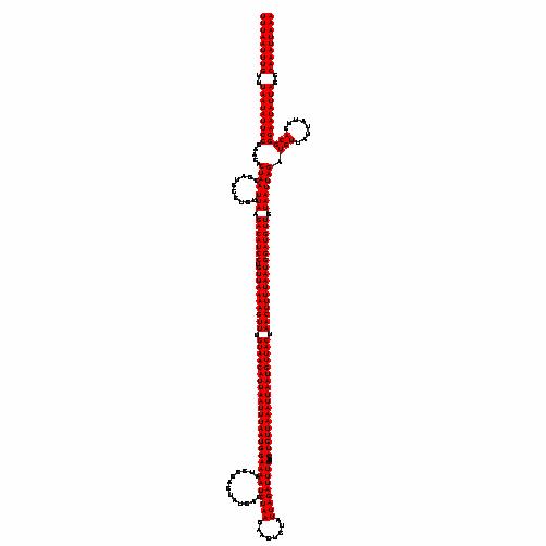 FR066912