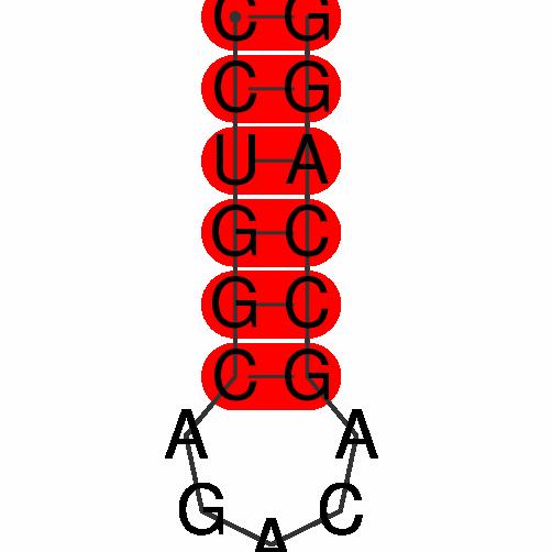 FR116409