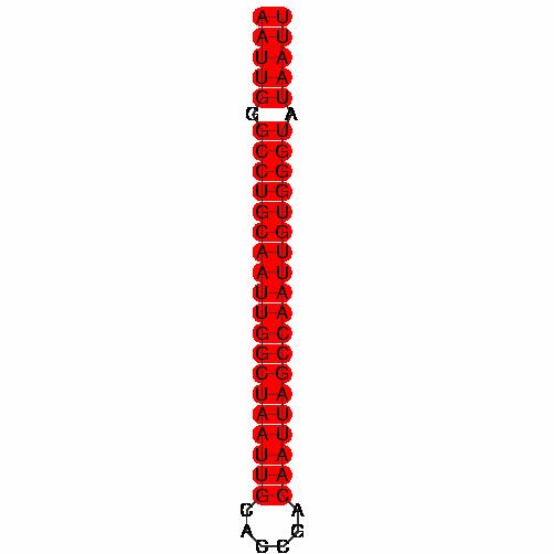 FR119894