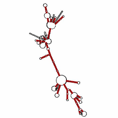FR120189
