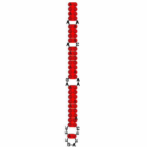 FR131381