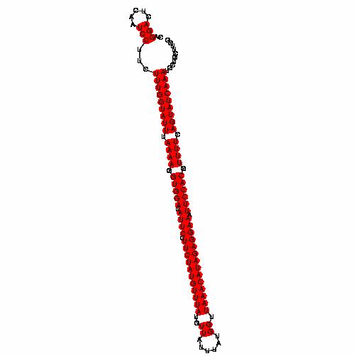 FR137914