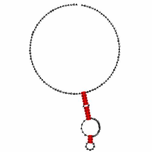 FR170674