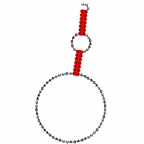 FR183006