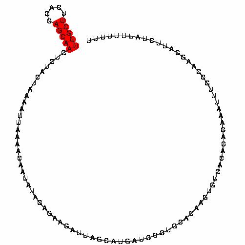 FR185241
