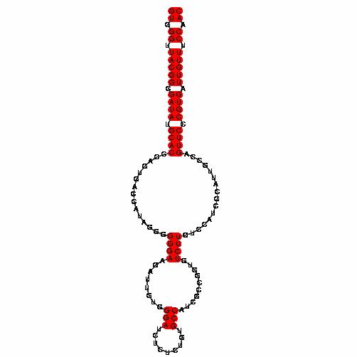 FR185906