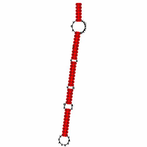 FR190638