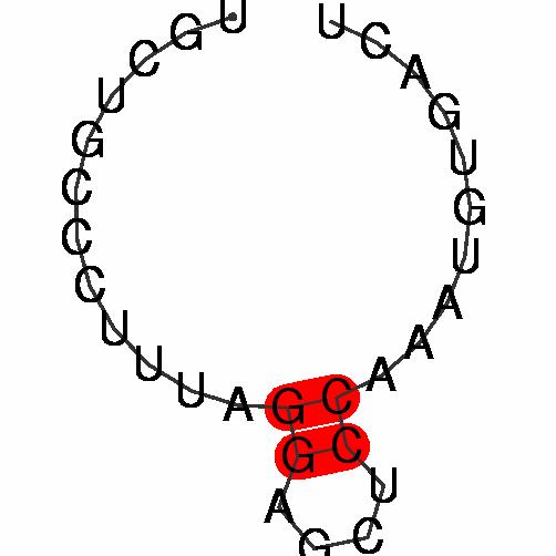 FR200464