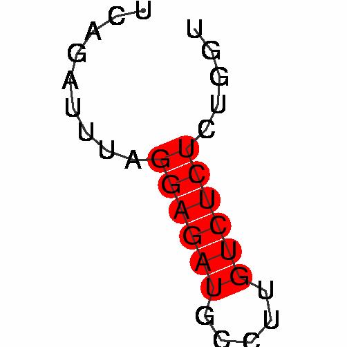 FR200642