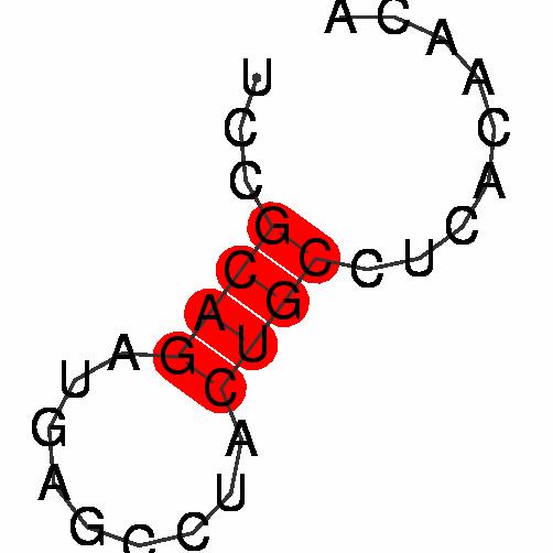 FR200784