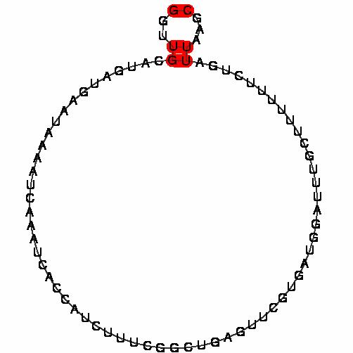 FR202052