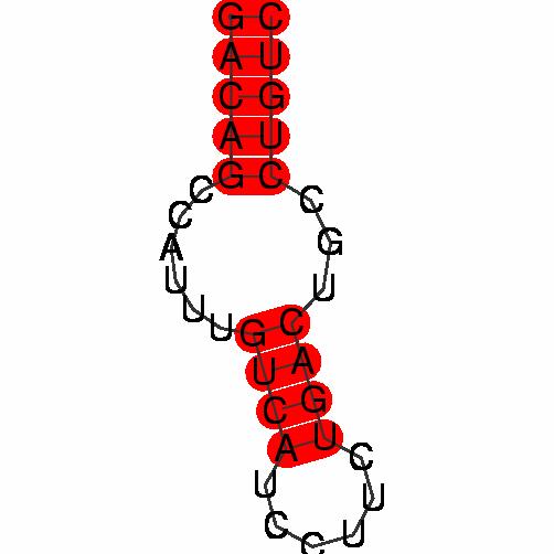 FR205290