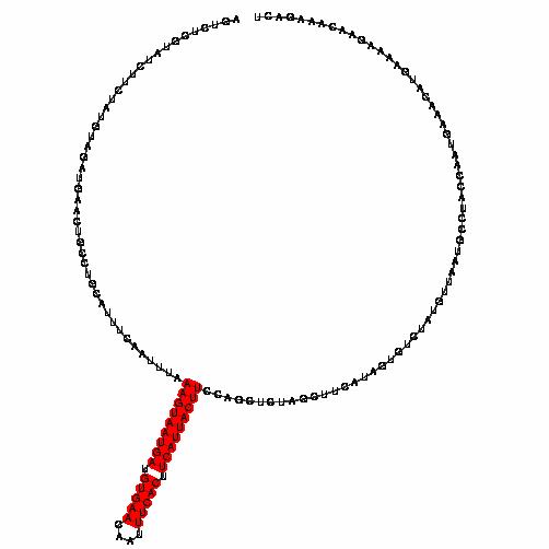 FR208501