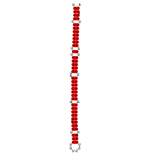 FR212216