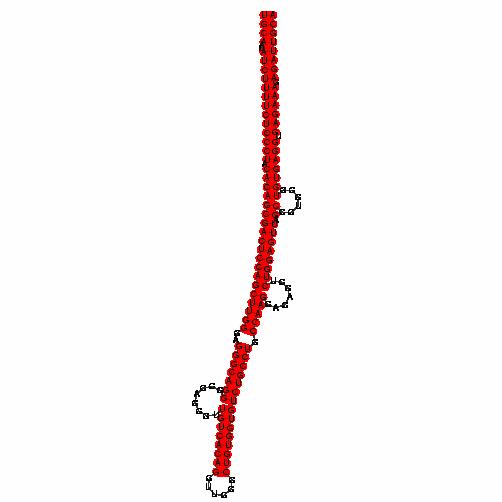 FR216467