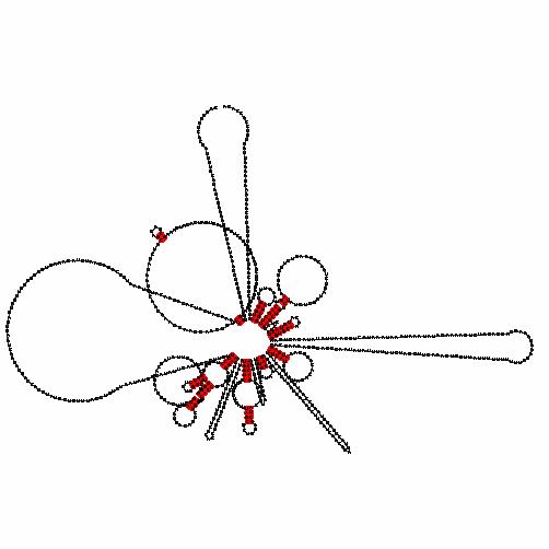 Gc11m055307 Gene