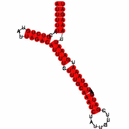 FR220401