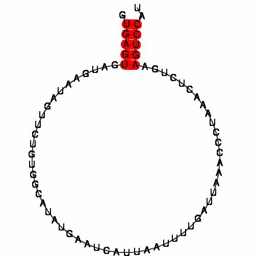 FR222874