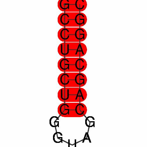 FR264502