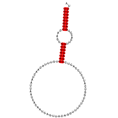 FR281631