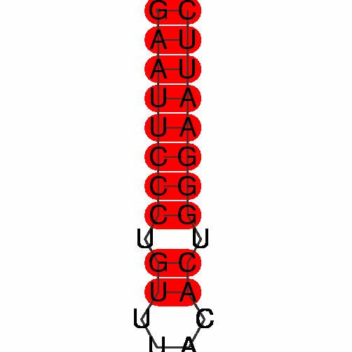 FR285237