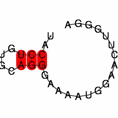 FR286408