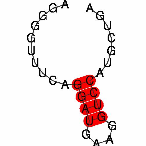 FR289002