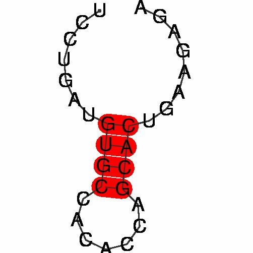 FR289205
