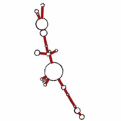 FR321482