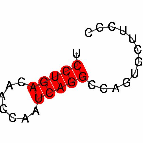 FR332008