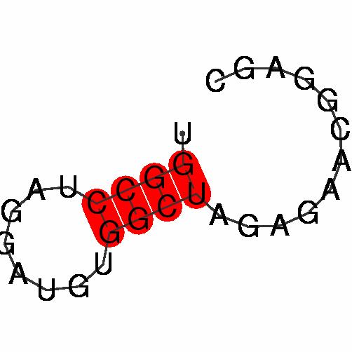 FR348301