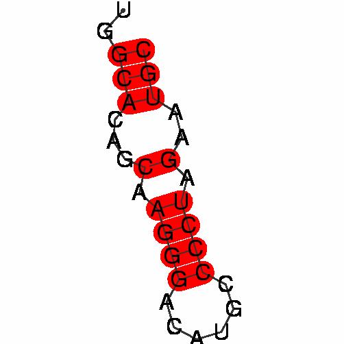 FR351019