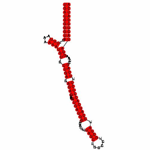 FR357751