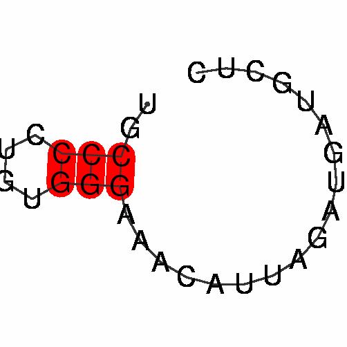 FR361928