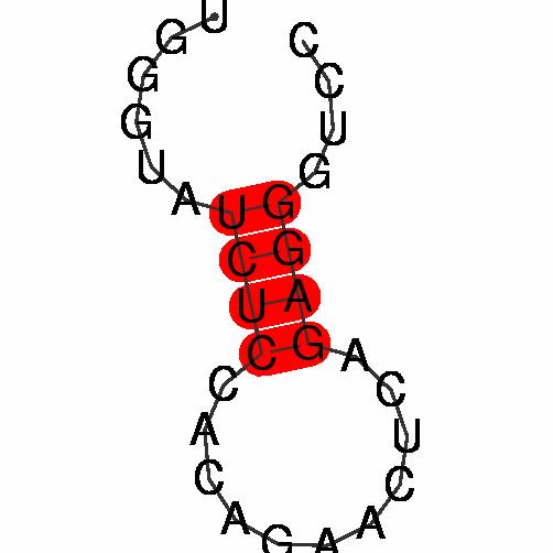 FR395235