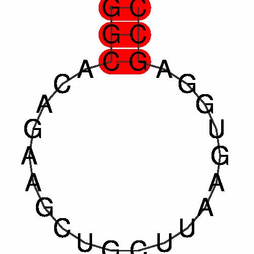FR400191
