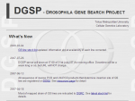 DGSP Database - Drosophila Gene Search Project Database