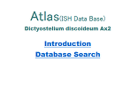Atlas (ISH Data Base)