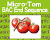 Micro-Tom BAC End Sequence Database