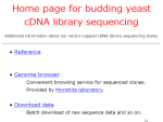 Budding yeast cDNA sequencing project